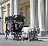 image of hearse  - a old black hearse wagon - JPG