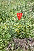 foto of landmines  - Minefield danger sign in a war area - JPG