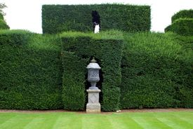 image of plinth  - Decoration of sculptured urn on a plinth in a sculptured hedge. ** Note: Shallow depth of field - JPG