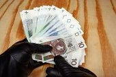 picture of bandit  - Polish money in the skin gloves boss bandit - JPG