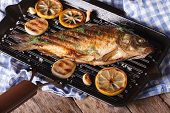 pic of grill  - grilled fish carp with lemon on a frying pan grill horizontal close - JPG