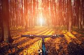 picture of biker  - Mountain biking down hill descending fast on bicycle - JPG