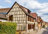 picture of alsatian  - Traditional Alsatian houses in Bergheim  - JPG