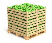 picture of crate  - Green apples in wooden crates on white background  - JPG