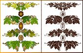 picture of hop-plant  - set of beer label or banner with hop pattern - JPG