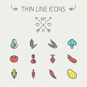 image of turnips  - Food and drink thin line icon set for web and mobile - JPG