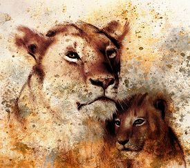picture of lion  - lion mother and lion cub - JPG