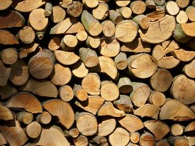 stock photo of split ends  - Split logs drying and making an attractive collage of interlocked cut log ends. Could be used as a background. ** Note: Soft Focus at 100%, best at smaller sizes - JPG