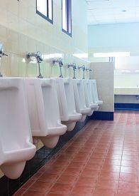 pic of urinate  - row white urinals in men