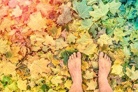 stock photo of marsala  - Naked barefoot on leaves park ground  - JPG