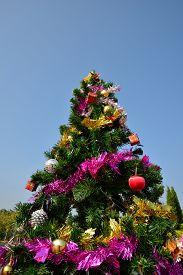pic of tassels  - big christmas tree - JPG