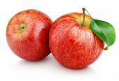 Red Apples With Leaf Isolated On White poster