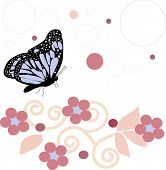 picture of butterfly flowers  - butterfly with flowers - JPG