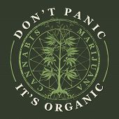 Vector Banner For Legalize Marijuana With Words Do Not Panic, It Is Organic. Illustration With Hand- poster