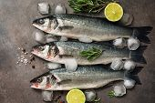 Three Raw Sea Bass Fish With Rosemary, Lime And Ice Cubes On A Dark Background, Flat Lay. Top View poster