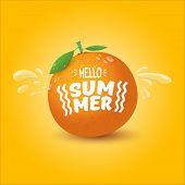 Vector Hello Summer Label Or Flyer Design Template With Fresh Orange Fruit Isolated On Orange Backgr poster
