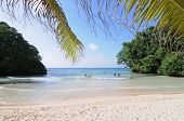 View Of Frenchmens Cove Beach In Jamaica poster