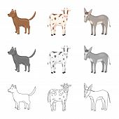 Isolated Object Of Breeding And Kitchen  Symbol. Collection Of Breeding And Organic  Stock Vector Il poster