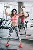 Attractive Muscular Fitness Woman Doing Exercise With Dumbbells In Gym poster