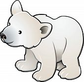 picture of polar bears  - A vector illustration of a cute polar bear - JPG