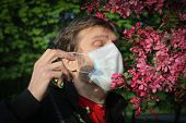 A Man In A Medical Mask Sneezes From Pollen. Seasonal Allergic Reaction To Pollen poster