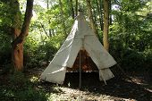 pic of wigwams  - A Canvas Wigwam Tent Erected in a Woodland Setting.