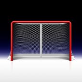 Ice hockey net, goal on black. Vector.