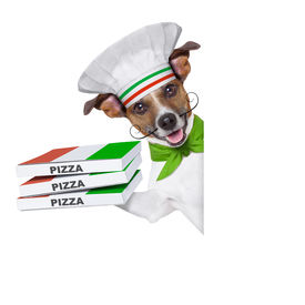 picture of jack-in-the-box  - pizza delivery dog with a stack of pizza boxes behind a blank placard - JPG