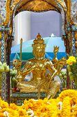 pic of brahma  - The Sacred  - JPG
