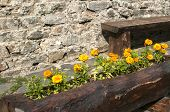 foto of stonewalled  - Wooden handmade flowerpot and bench on stonewall background - JPG