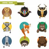picture of avatar  - Animal avatars set with flat design - JPG