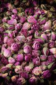 image of english rose  - Image of nostalgic vintage  pink dried roses buds - JPG