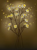 image of chamomile  - Chamomile flower against an abstract background  - JPG