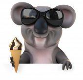 image of koalas  - Fun koala - JPG