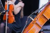 picture of cello  - Cello orchestra musical instrument with a violonist in background - JPG