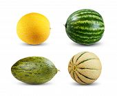 stock photo of muskmelon  - Set Collection of Melon and Watermelon isolated on white background - JPG
