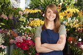 image of flower shop  - Florist Standing In Shop In Front Of Flower Display - JPG