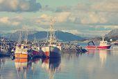 stock photo of lofoten  - view of Lofoten archipelago bay with ships - JPG