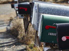 stock photo of mailbox  - Green mailbox in a row with black silver and white mailboxes - JPG
