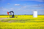 stock photo of nod  - Oil pumpjack or nodding horse pumping unit in Saskatchewan prairies Canada - JPG