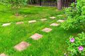 Landscaping In Home Garden. Natural Landscape Design With Path And Flowers In Summer. Beautiful Land poster