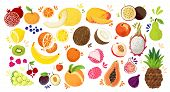 Set Of Colorful Hand Draw Fruits - Tropical Sweet Fruits, And Citrus Fruit Illustration. Apple, Pear poster