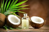 Coconut palm oil in a bottle with coconuts and green palm tree leaf on brown background. Coco nut cl poster