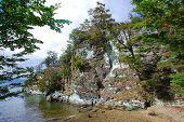 foto of tierra  - Tierra del Fuego National Park is a national park on the Argentine part of the island of Tierra del Fuego in the ecoregion of Patagonic Forest and Altos Andes - JPG