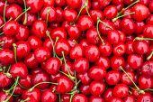 Fresh Sweet Red Cherry Texture. Ripe Sweet Cherry. Summer Berry. Garden Harvest. Fresh Berries. Harv poster