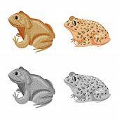 Vector Illustration Of Wildlife And Bog Sign. Collection Of Wildlife And Reptile Stock Vector Illust poster