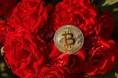 A Thin Golden Coin Of Bitcoin Is Laying Down On The Rose Flowers. The Big And Golden Bitcoin Was Loc poster