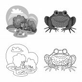 Vector Illustration Of Wildlife And Bog Icon. Set Of Wildlife And Reptile Stock Symbol For Web. poster