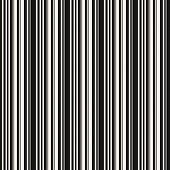 Vertical Stripes Seamless Pattern. Simple Vector Lines Texture. Black And White Abstract Geometric S poster