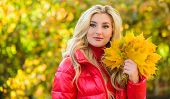 Lady Posing With Leaves Autumnal Nature Background. Girl Blonde Makeup Dreamy Face Hold Bunch Fallen poster